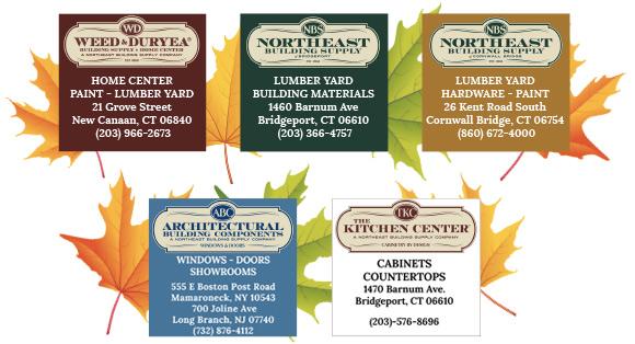 NBS November Newsletter